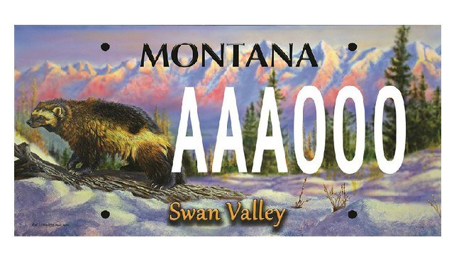 Swan Valley license plate by Ron Ukrainetz