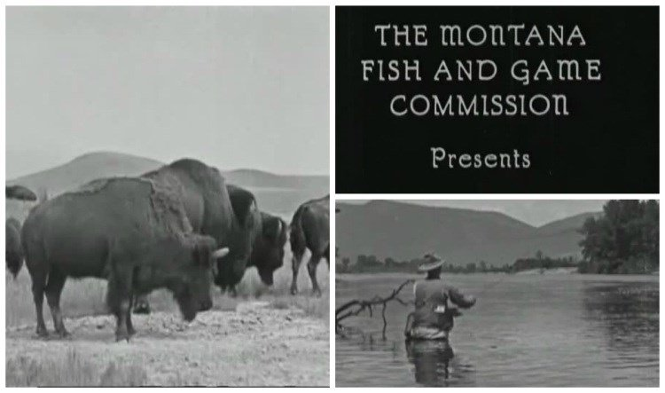 Historic Films From Montana Wildlife Agency Discovered
